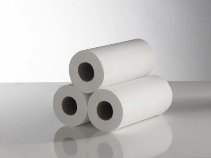 """Picture of White Dressing Roll 10"""" (2ply, 50m, 125sheets, Pack of 18)"""
