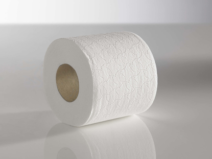 Picture of Maxi Toilet Rolls (2ply, 320 sheets, Pack of 36)