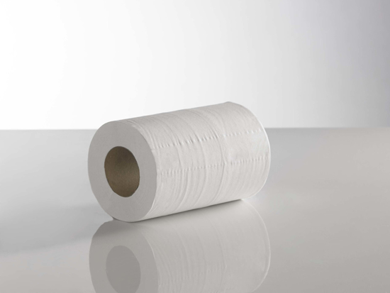 Picture of White Mini Centre Feed Roll (2ply, Pack of 12)