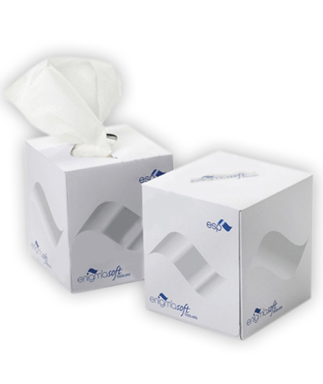 Picture of Facial Tissues Cube (2Ply,  70 Sheets, Pack of 24)