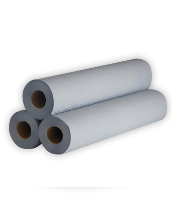"""Picture of Blue Hygiene Roll 10"""" (2ply, Pack of 24)"""