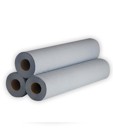 """Picture of Blue Hygiene Roll 12"""" (2ply, 100 Sheets, Pack of 12)"""